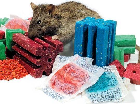 Desratizaci n - Cebos para ratones ...