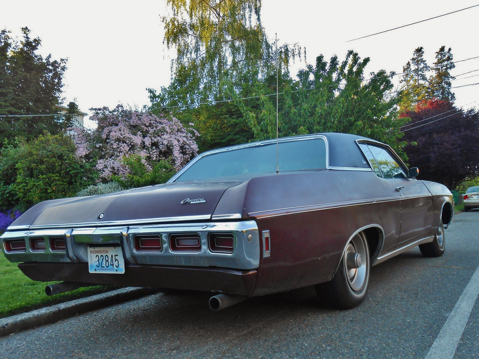 seattle 39 s parked cars 1969 chevrolet caprice. Black Bedroom Furniture Sets. Home Design Ideas