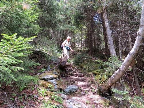 descending Gillespie Mt