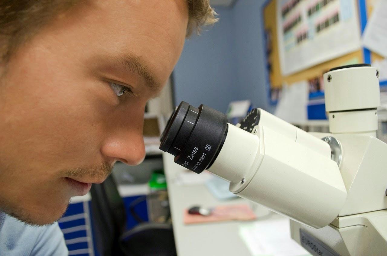 Transplante implante capilar - médico observando em microscópio no pré-operatório