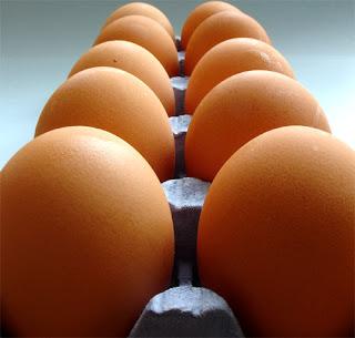 http://www.gastronomiaycia.com/wp-content/uploads/2008/09/como_conservar_huevos.jpg