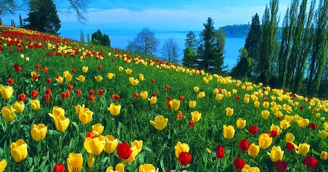 spring season in urdu Sea on (sē′zən) n 1 a one of the four natural divisions of the year, spring, summer, fall, and winter, in the north and south temperate zones each season, beginning.