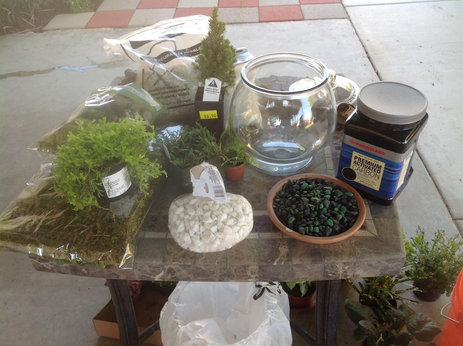 Grandmas Enchanted Fairy Garden Fairy Garden Class Terrarium