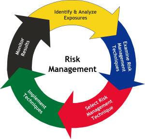 Risk Management and Insurance reserch work