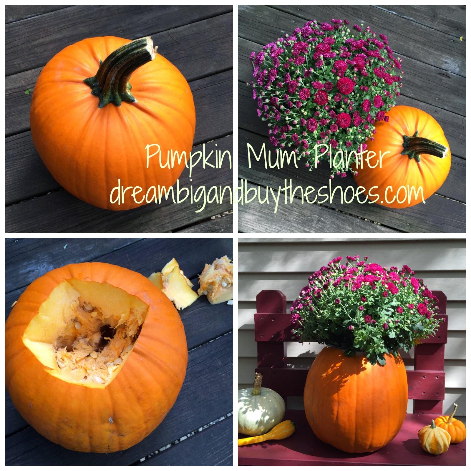 pumpkin_mum_planter