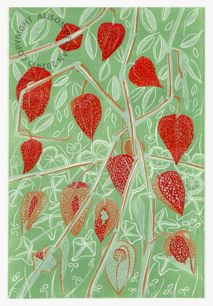 https://www.etsy.com/uk/listing/178137551/original-lino-print-physalis-chinese?