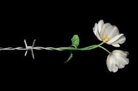 DÍA INTERNACIONAL DE CONMEMORACIÓN EN MEMORIA DE LAS VÍCTIMAS DEL HOLOCAUSTO. 27 de Enero