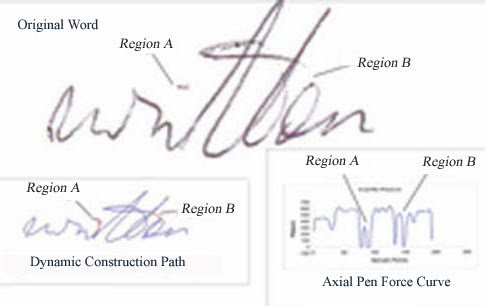 Forensic Handwriting Expert