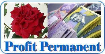 Programul Profit Permanent (Click pe FOTO)
