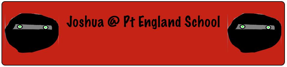 Josh @ Pt England School