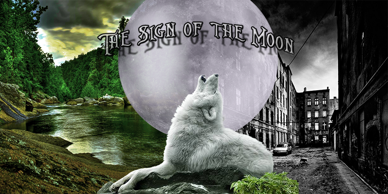 THE SIGN OF THE MOON