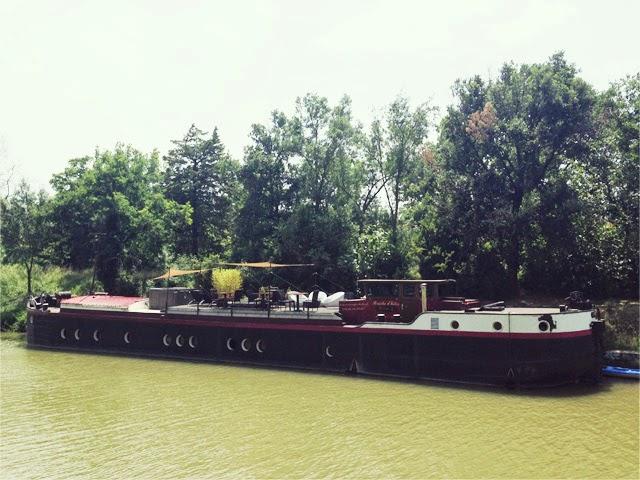 La Rive Belle- écluse herminis -canal du midi