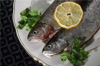 tips hidup sehat dengan ikan