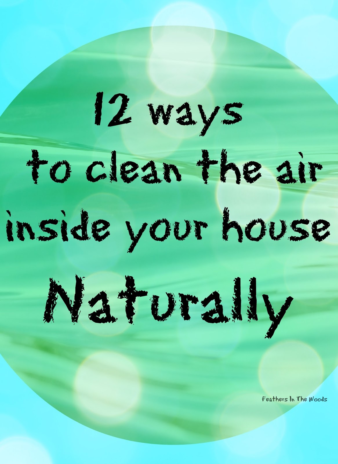 12 Natural Ways To Clean The Air Inside Your House