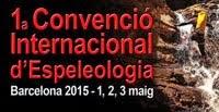 Convenció Internacional 2015