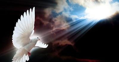 Pour la venue de l'Amour dans le monde, rendez-vous tous les dimanches soir 20 heures.  - Page 24 White-dove-wings-1920x1200-wallpaper-paloma-blanca-espiritu-santo----s