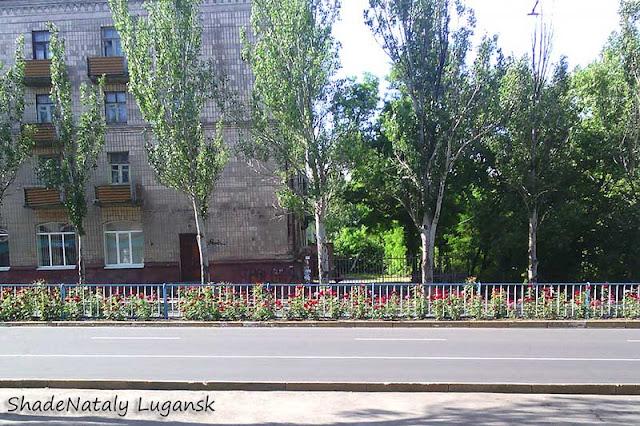 Цветы в Луганске