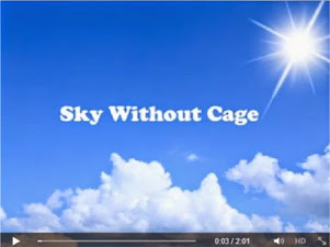 Sky Without Cage