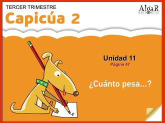 http://bromera.com/tl_files/activitatsdigitals/capicua_2c_PF/CAPICUA2-U11-PAG47-CAS.swf