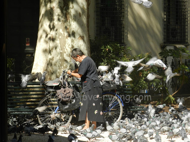 Lady rides into square on her bike with a bag of birdseed
