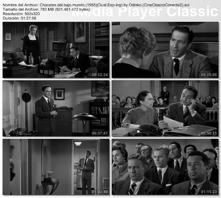 Chacales del bajo mundo | 1955 | Illegal