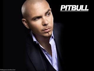 pitbull_picture