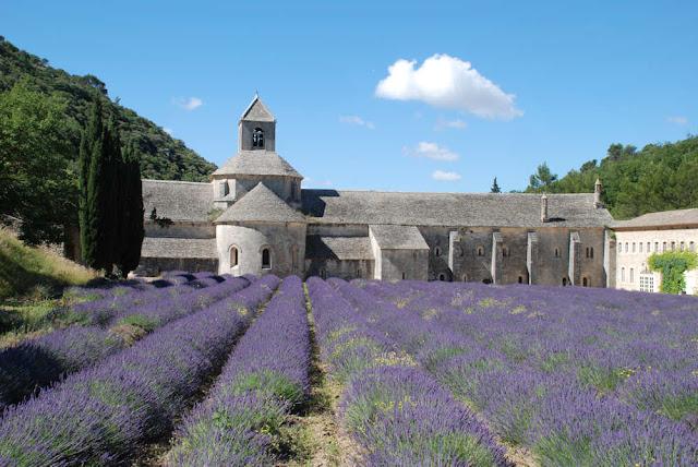 L'abbaye de Sénanque se visite à partir de la maison à louer à Gordes