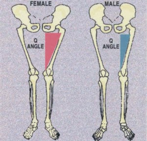 a comparison of men and womens abilities The most obvious difference between men and women is i think i'll update this article soon with a section on sex differences in physical abilities that rely on.