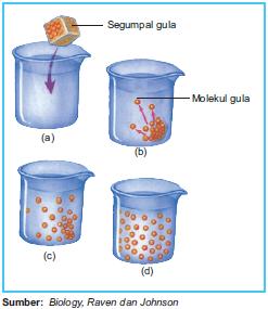 Menyebarnya molekul gula pada proses difusi