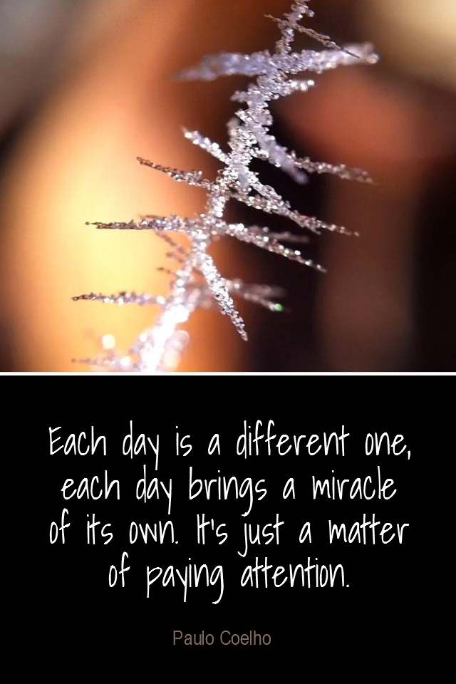 visual quote - image quotation for AWRENESS - Each day is a different one, each day brings a miracle of its own. It's just a matter of paying attention. - Paulo Coelho