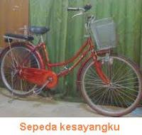 Sepeda Kesayangku