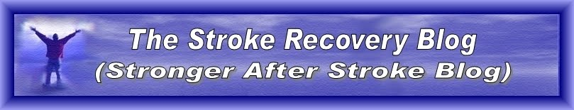 THE STROKE RECOVERY BLOG (Stronger After Stroke Blog)