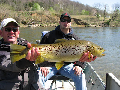 Brown Trout Caught on the White River