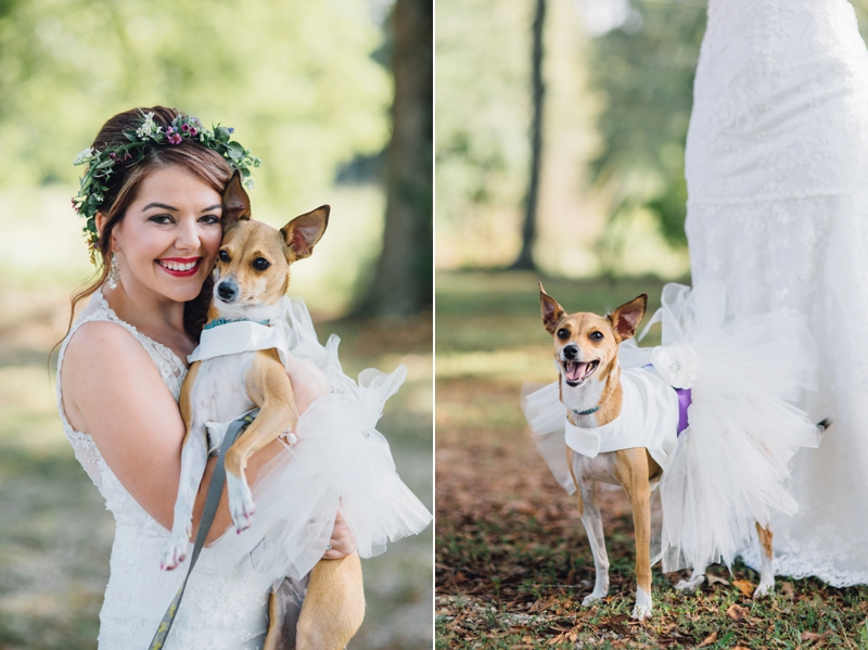 the bride with her bridesmaid dog