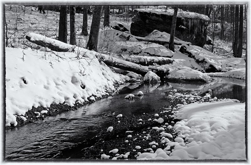Shanty Hollow Creek