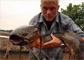 9 Monster Sungai yang Hidup di Perairan Dunia