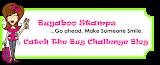Bugaboo Challenge Blog