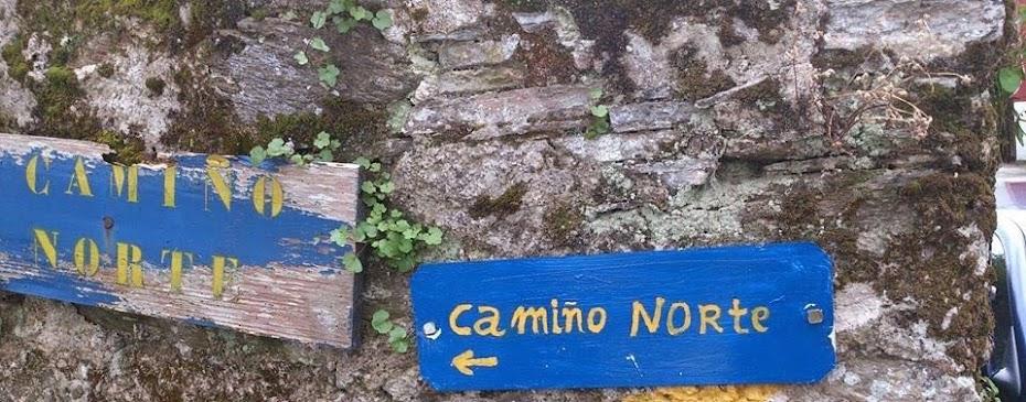 Camino del Norte 2017