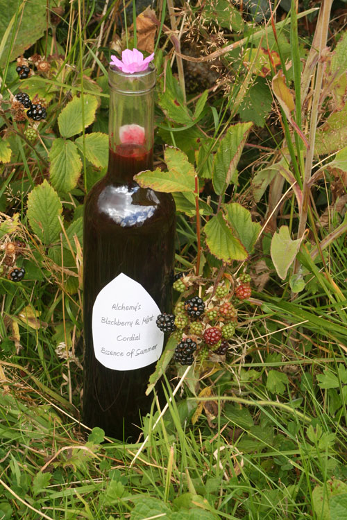Irish Food and Drink: Bottle of Blackberry and Mint Cordial photo by Hester Casey