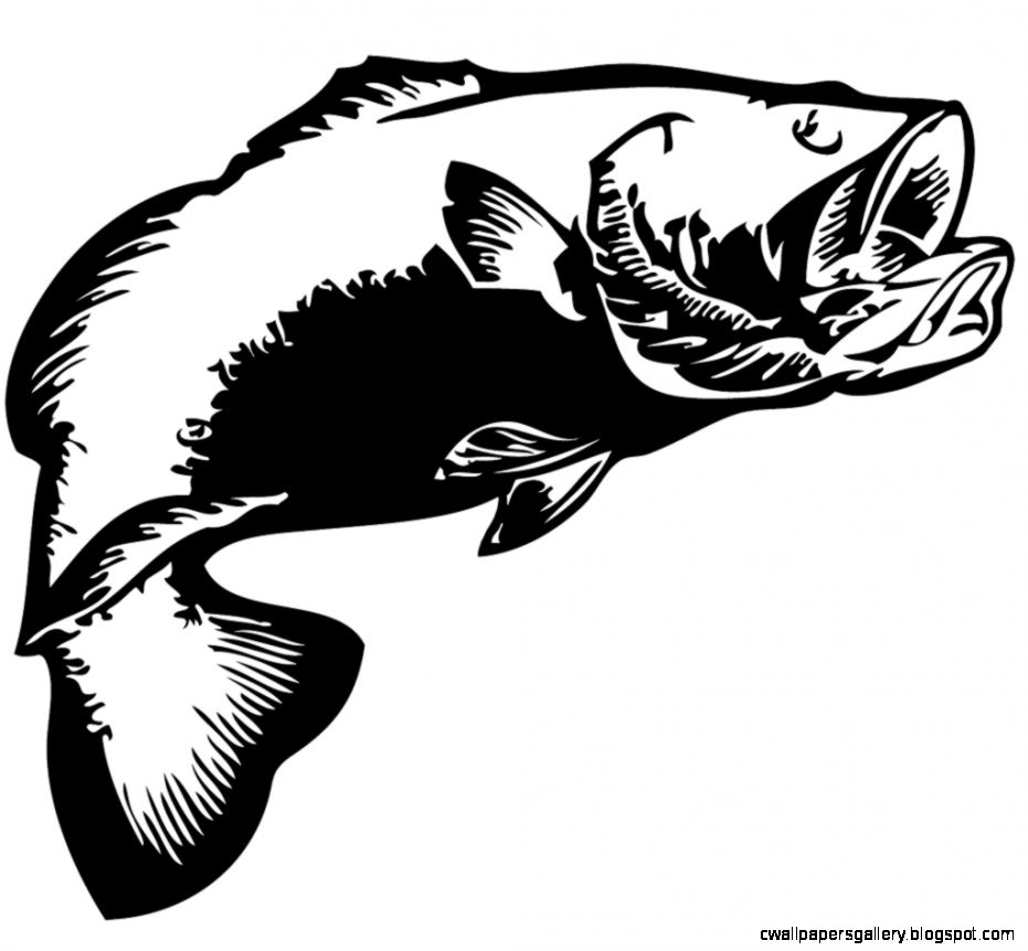 Largemouth Bass Silhouette   Top Images