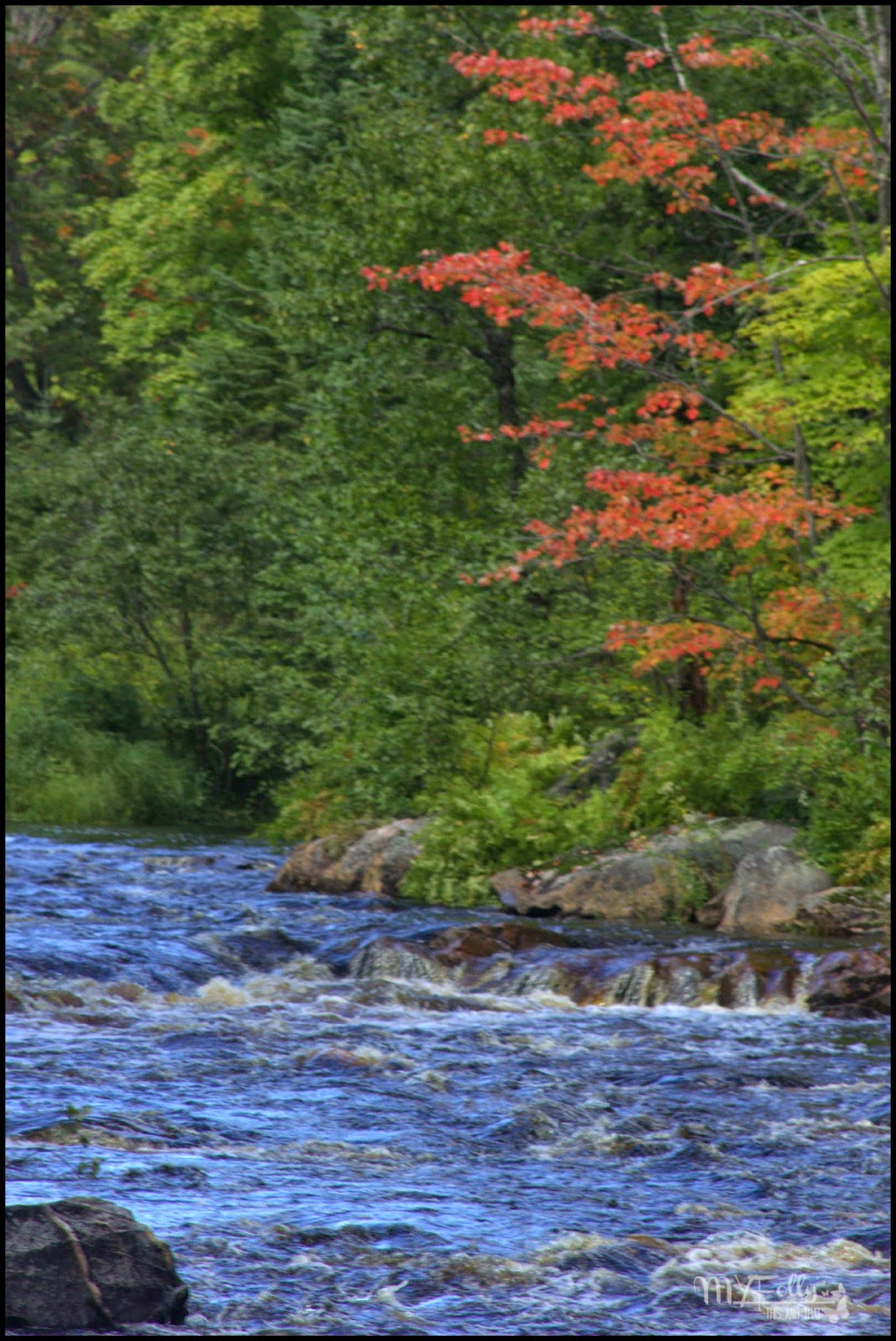 Almost Wordless Wednesday ~ #fall #leaves #water #uppermichigan
