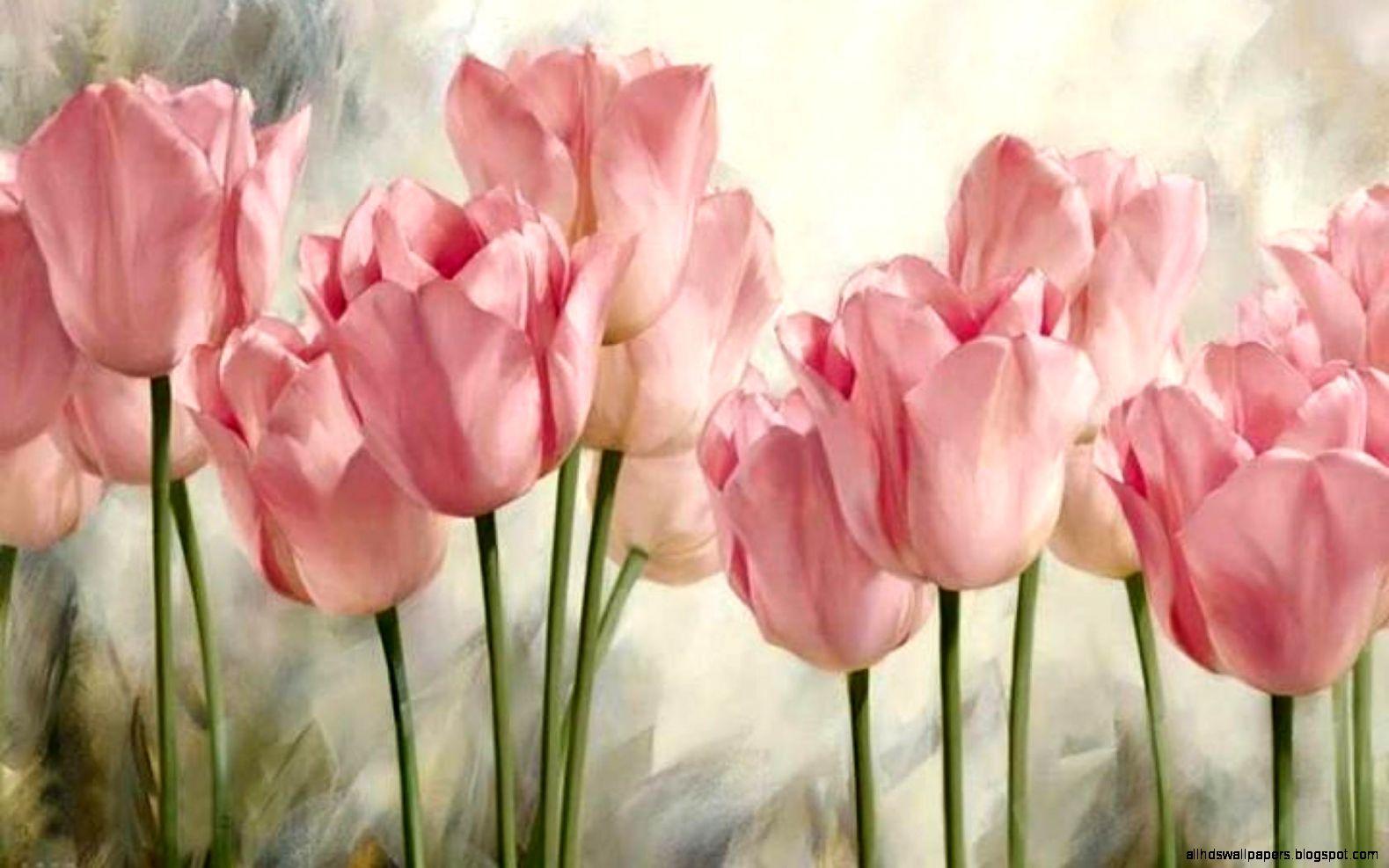 tulips flowers vintage wallpaper hd all hd wallpapers