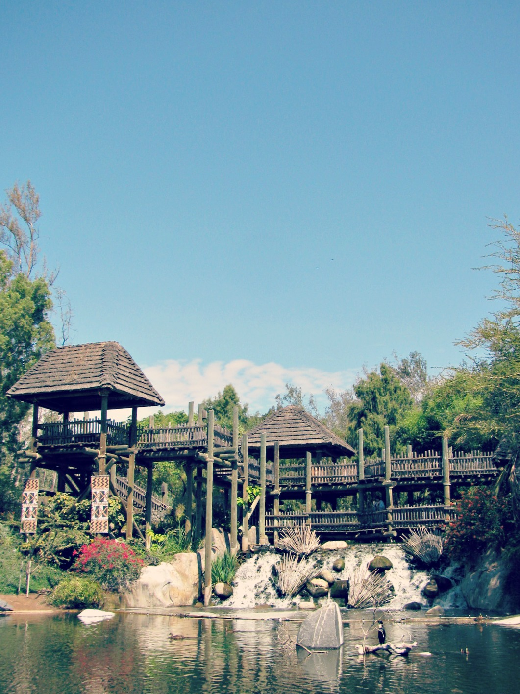 San Diego Safari Park // Treehouse and Waterfall
