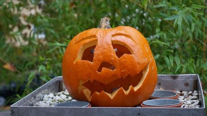 #halloweenkürbis