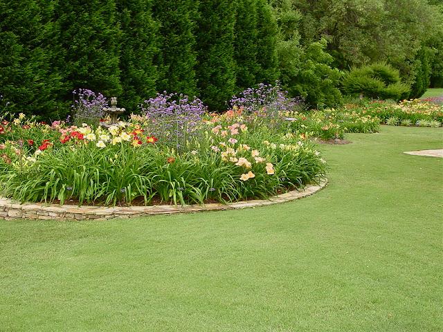 Garden Photo of the Day Jun 7 2012