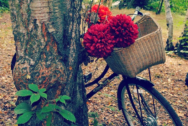 Bike with wicker basket