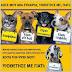 Πτολεμαιδα- Με λύπη και απογοήτευση,πληροφορηθήκαμε οτι κυκλοφόρουν φήμες στην πόλη μας για τα ζώα του κυνοκομείου και την επικινδυνότητα τους,λόγω των ασθενειών.......