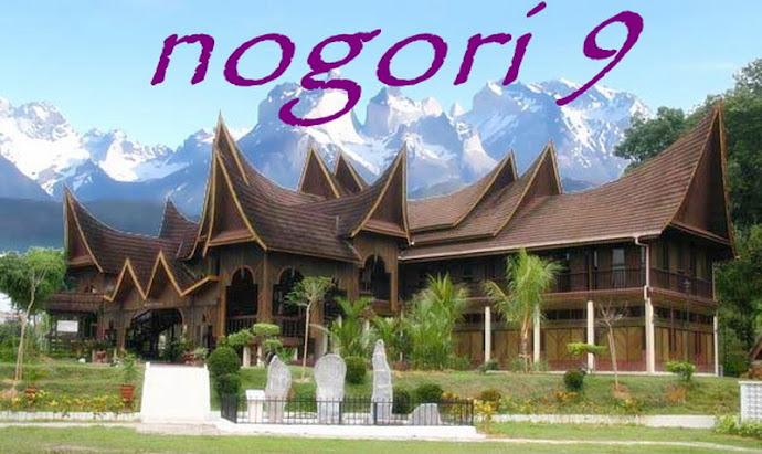 Nogori 9