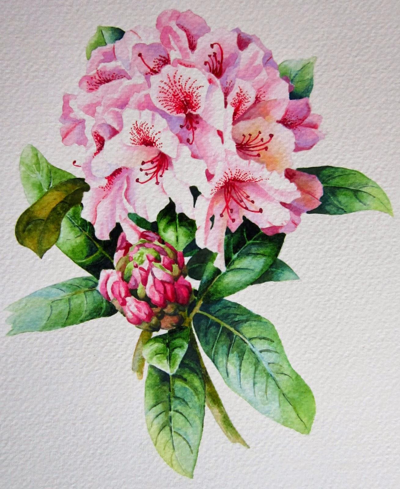 Piccoli capricci rododendro for Fiori di cartoncino