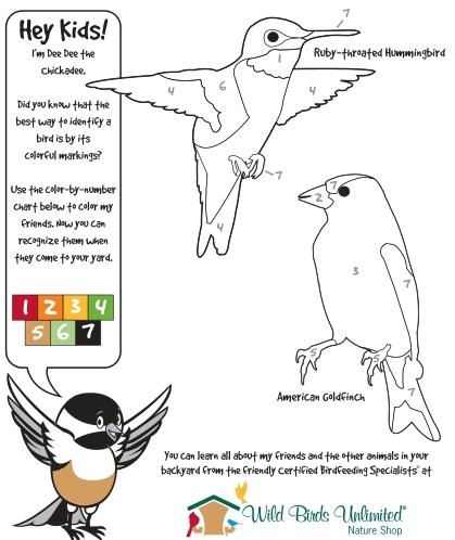 Celebrate Draw A Bird Day